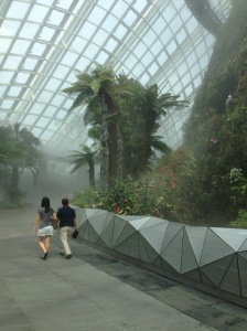 "Taken in Singapore's ""Gardens by the Bay"" (3/3/2013)"